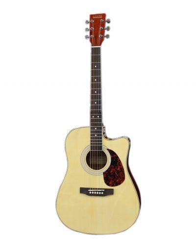 plug in guitar