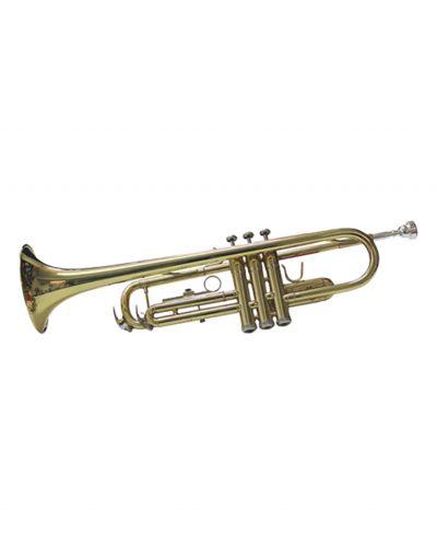 Trumpet for Beginner