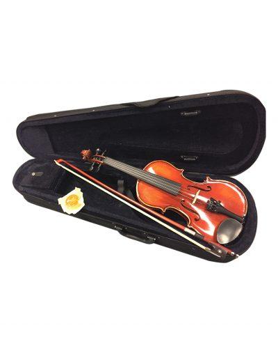 adult violin