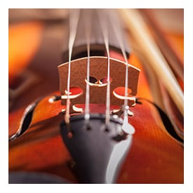 Violin Buying Guide